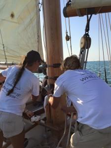Crew Working