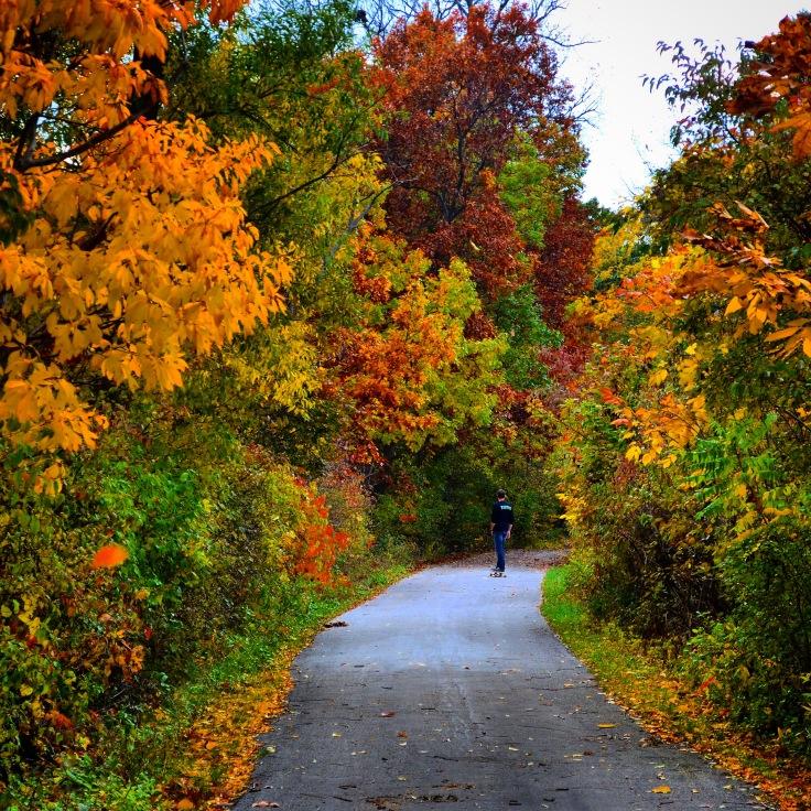 Huron, Ohio - Sheldon's Marsh State Park Nature Preserve